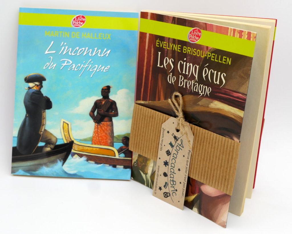 """Lot x2 """"l'inconnu du pacifique"""" et """"les 5 écus de Bretagne"""" – LiVRE de POCHE"""
